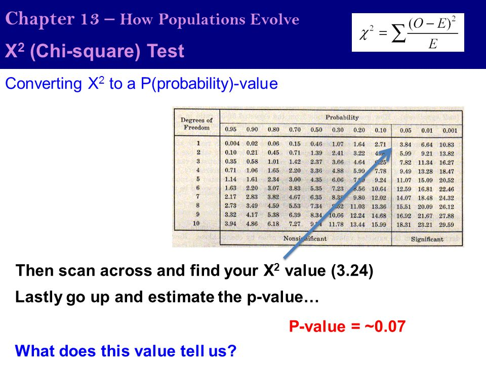 Chapter 13 – How Populations Evolve