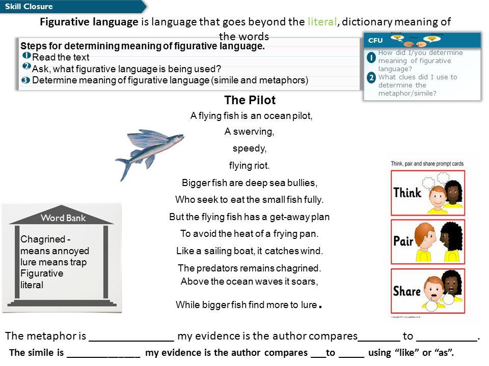 A flying fish is an ocean pilot,