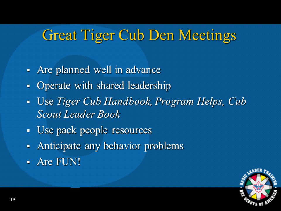 Great Tiger Cub Den Meetings