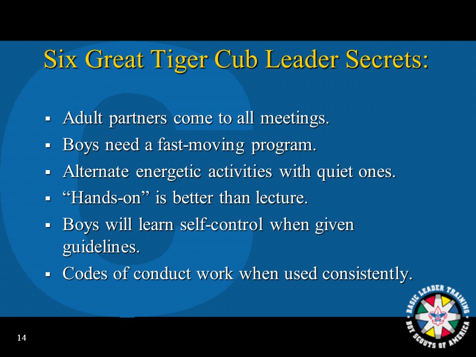 Six Great Tiger Cub Leader Secrets: