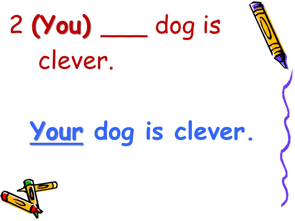 2 (You) ___ dog is clever. Your dog is clever.