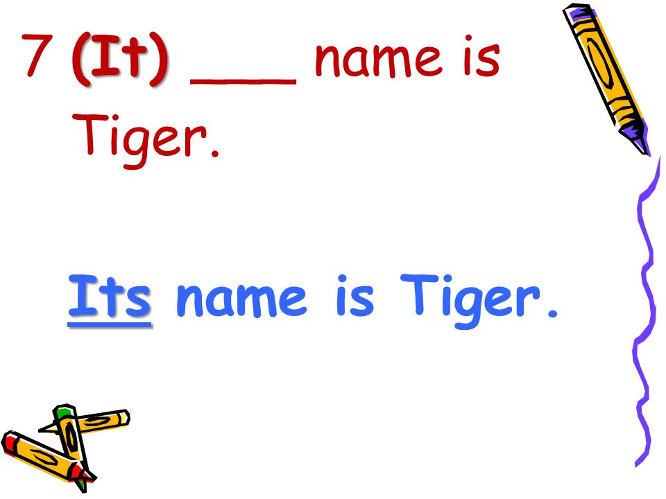 7 (It) ___ name is Tiger. Its name is Tiger.