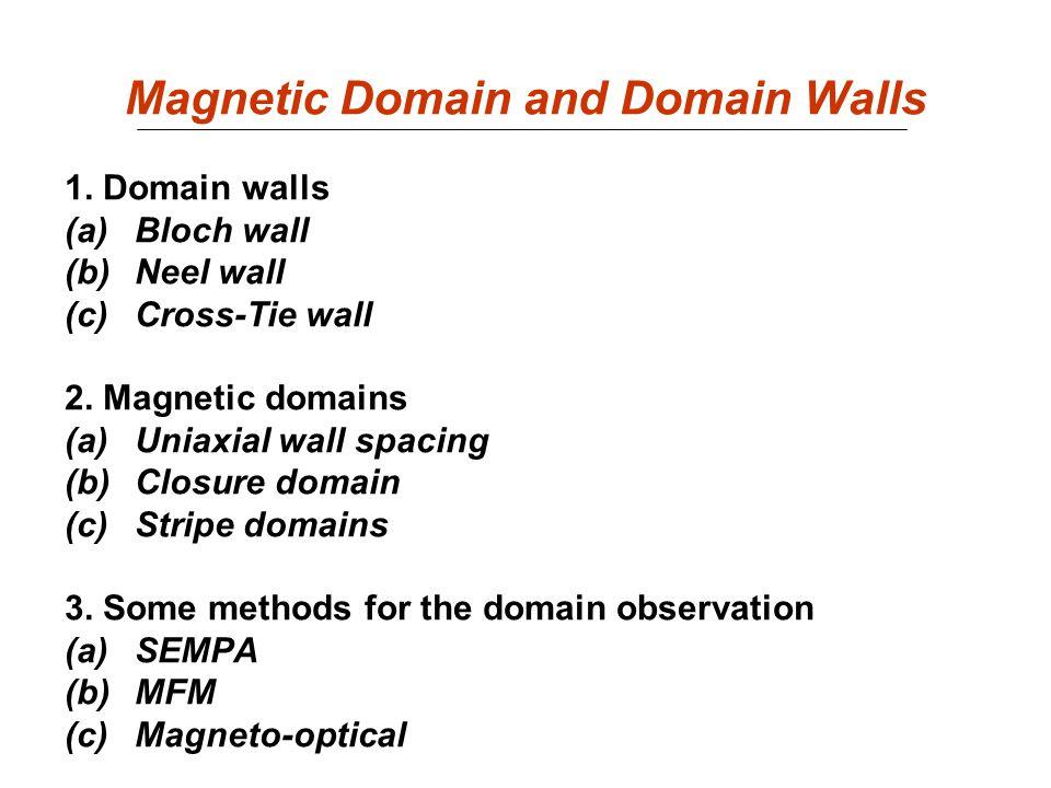 Magnetic Domain and Domain Walls