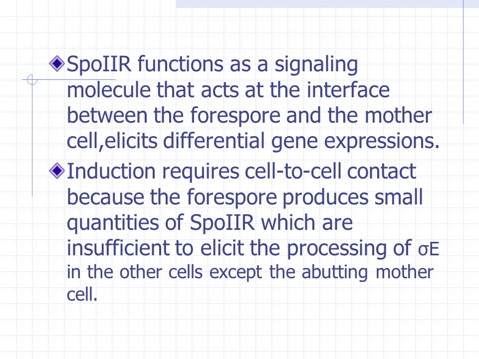 SpoIIR functions as a signaling molecule that acts at the interface between the forespore and the mother cell,elicits differential gene expressions.