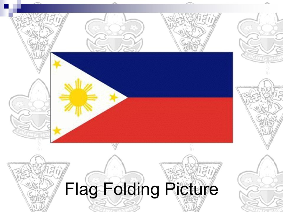 Flag Folding Picture