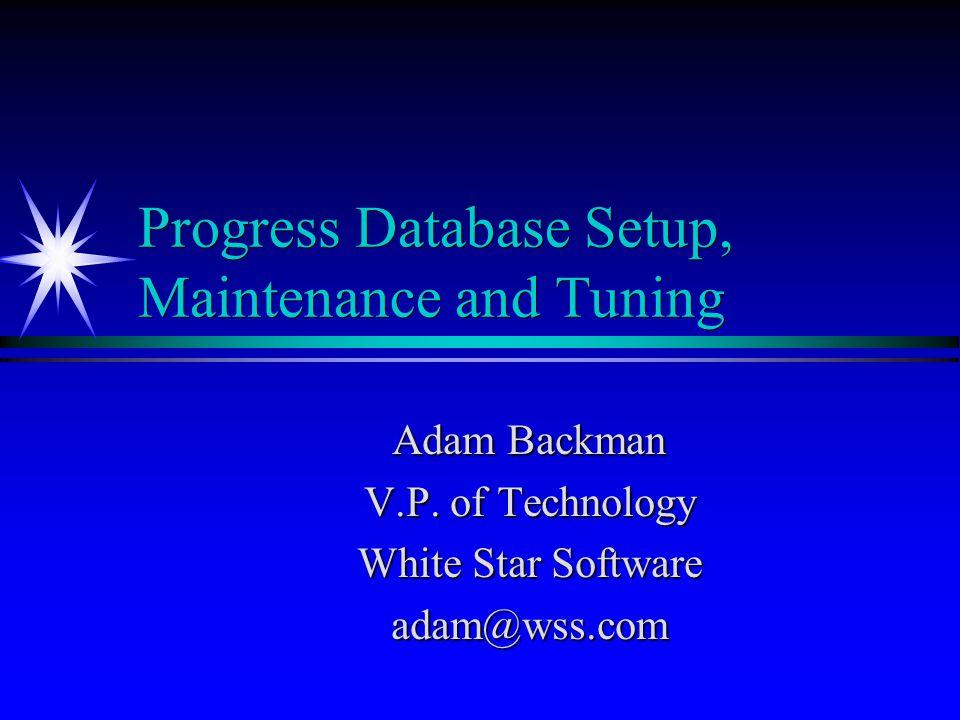 Progress Database Setup, Maintenance and Tuning
