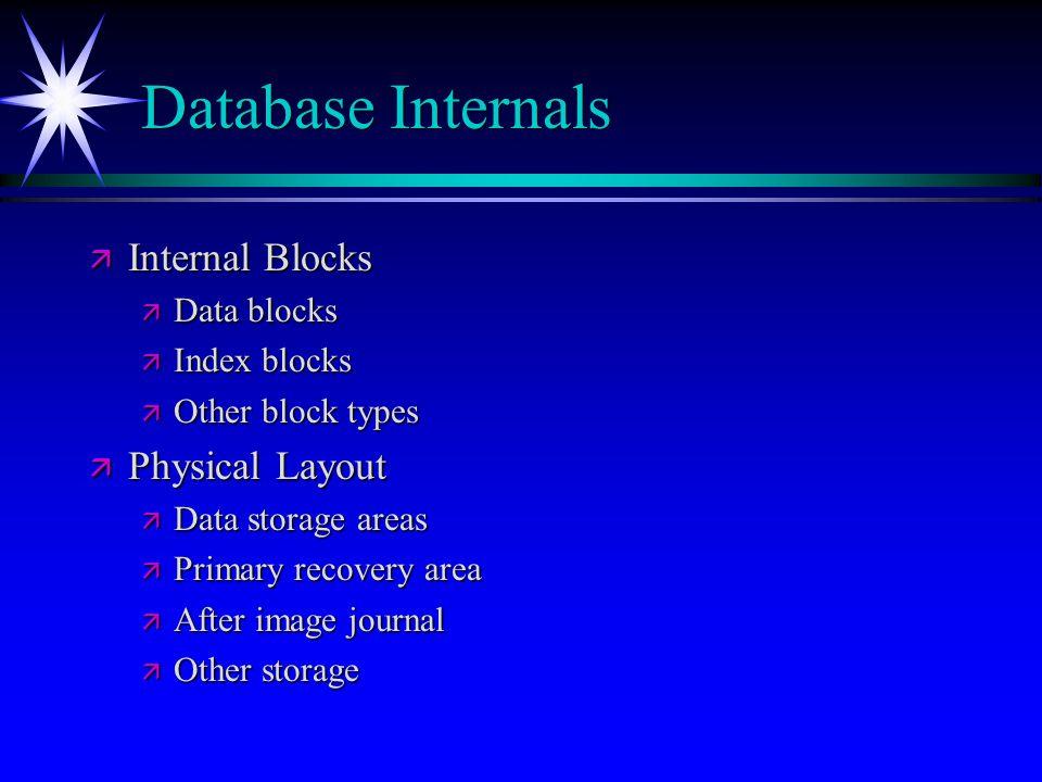 Database Internals Internal Blocks Physical Layout Data blocks