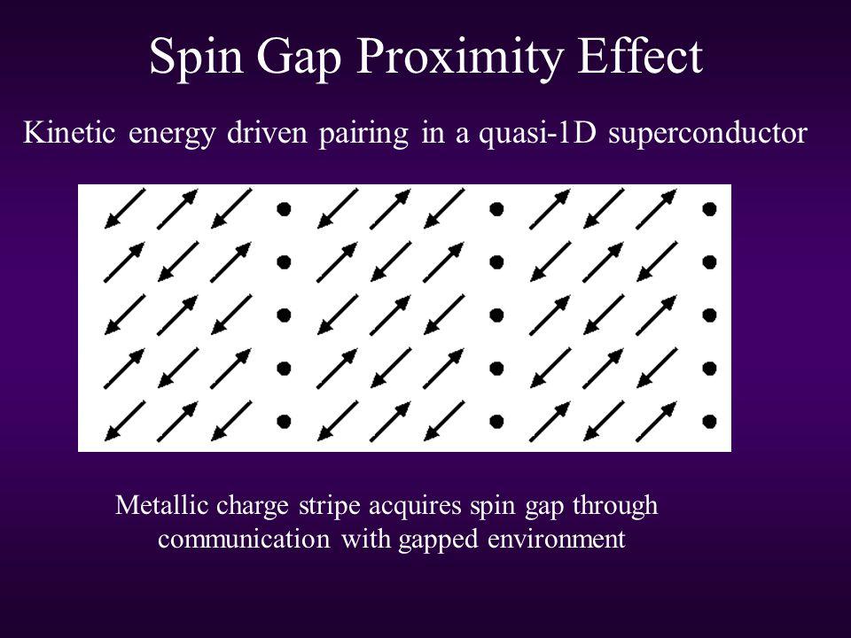 Spin Gap Proximity Effect