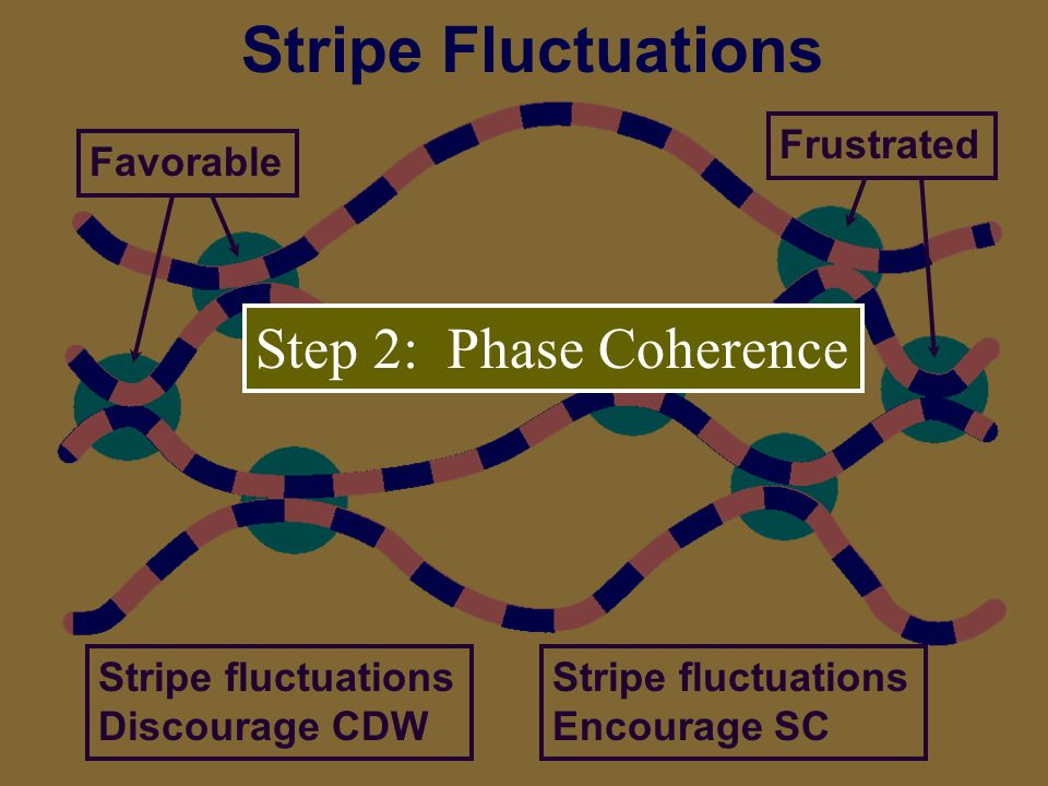 Stripe Fluctuations Step 2: Phase Coherence Frustrated Favorable