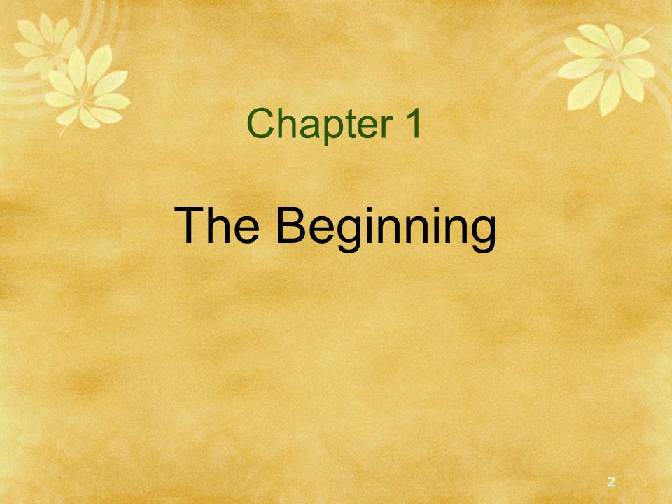 Chapter 1 The Beginning