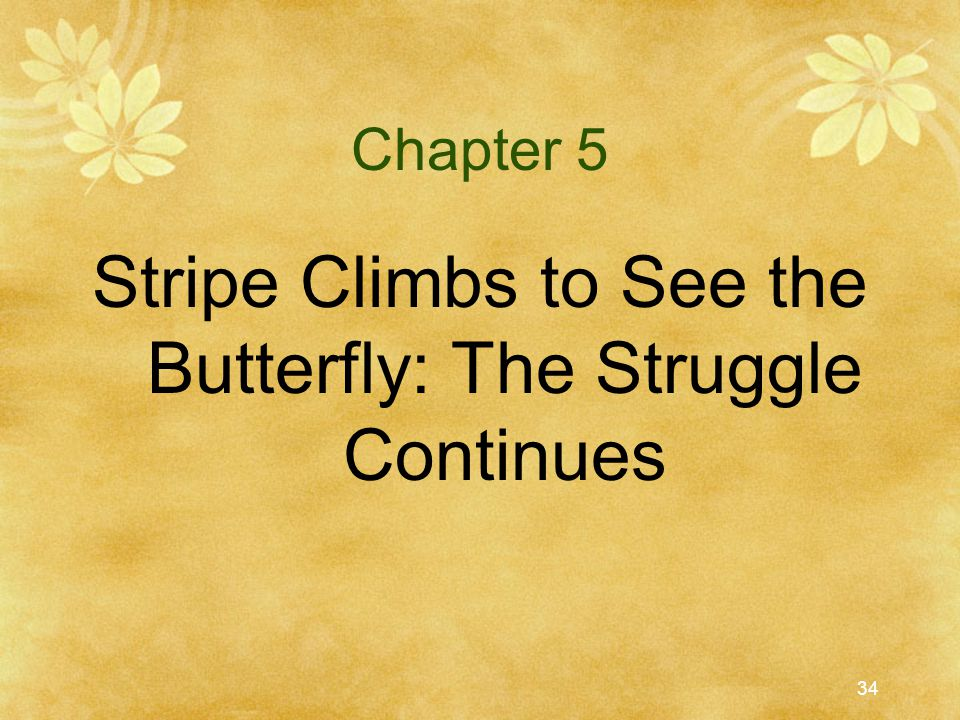 Stripe Climbs to See the Butterfly: The Struggle Continues