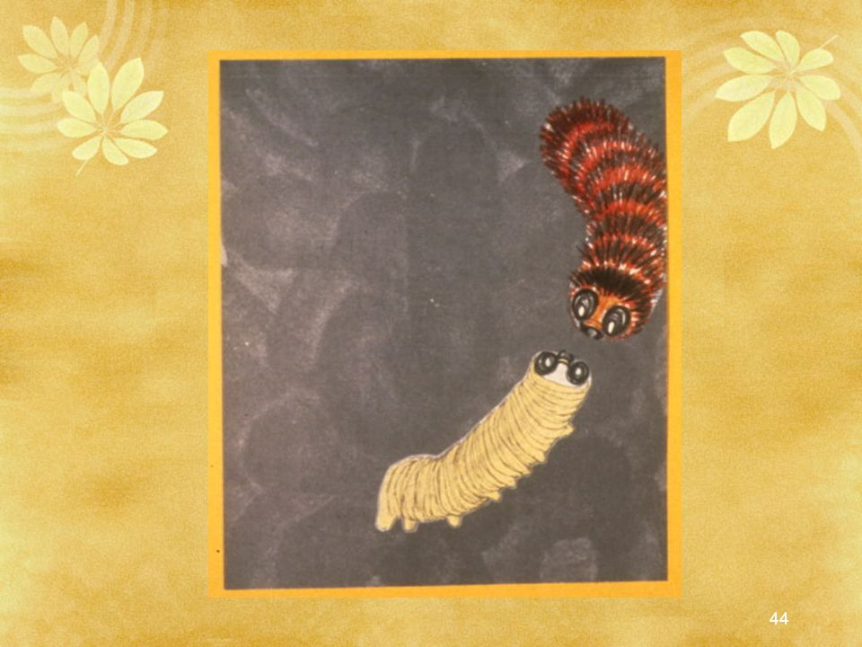 Stripe looked at each caterpillar inebriated with joy that there could be a butterfly inside.
