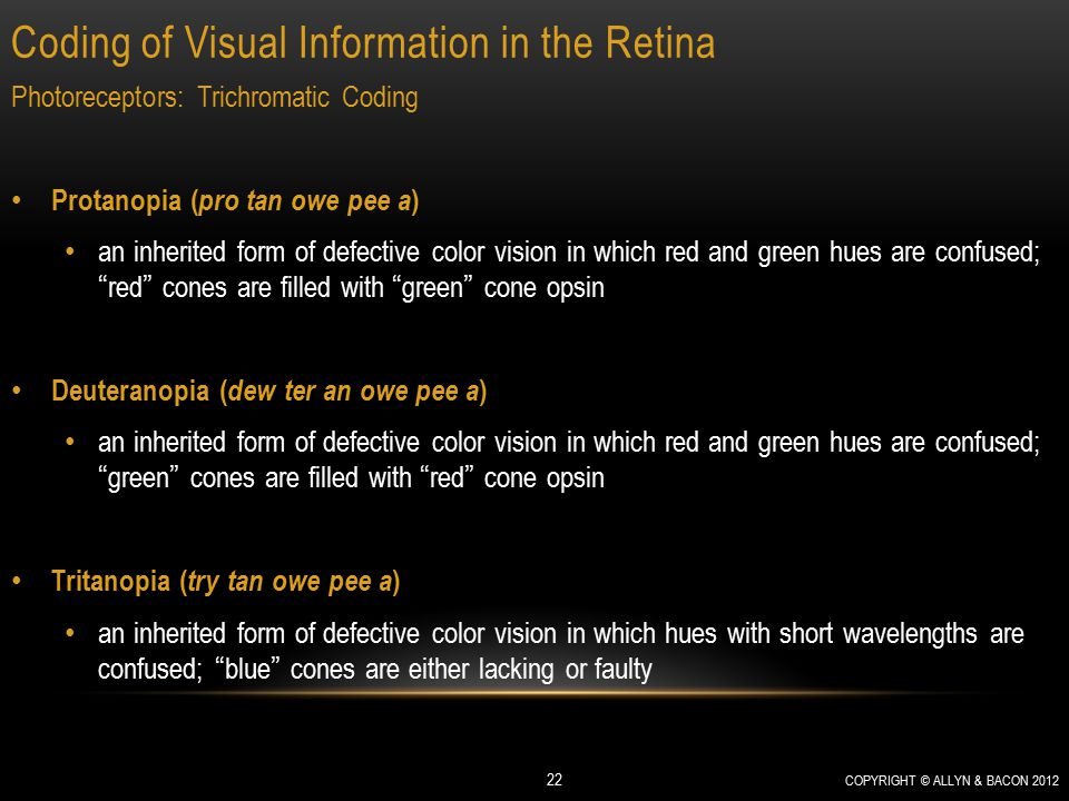 Coding of Visual Information in the Retina