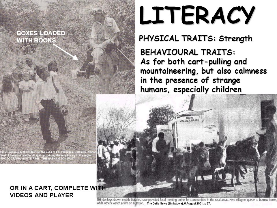 LITERACY PHYSICAL TRAITS: Strength BEHAVIOURAL TRAITS: