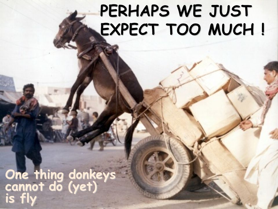 PERHAPS WE JUST EXPECT TOO MUCH !