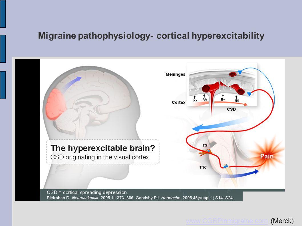 Migraine pathophysiology- cortical hyperexcitability