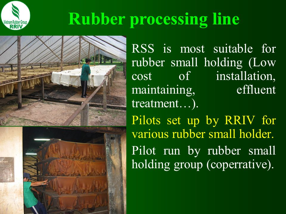 Rubber processing line