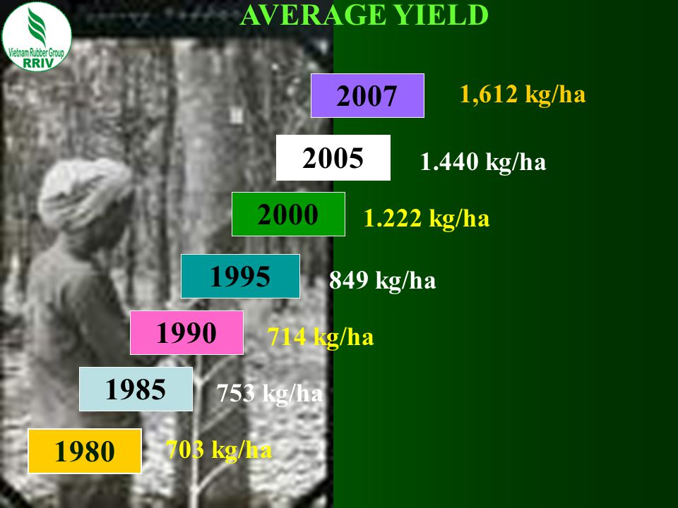 AVERAGE YIELD 2007. 1,612 kg/ha. 2005. 1.440 kg/ha. 2000. 1.222 kg/ha. 1995. 849 kg/ha. 1990.