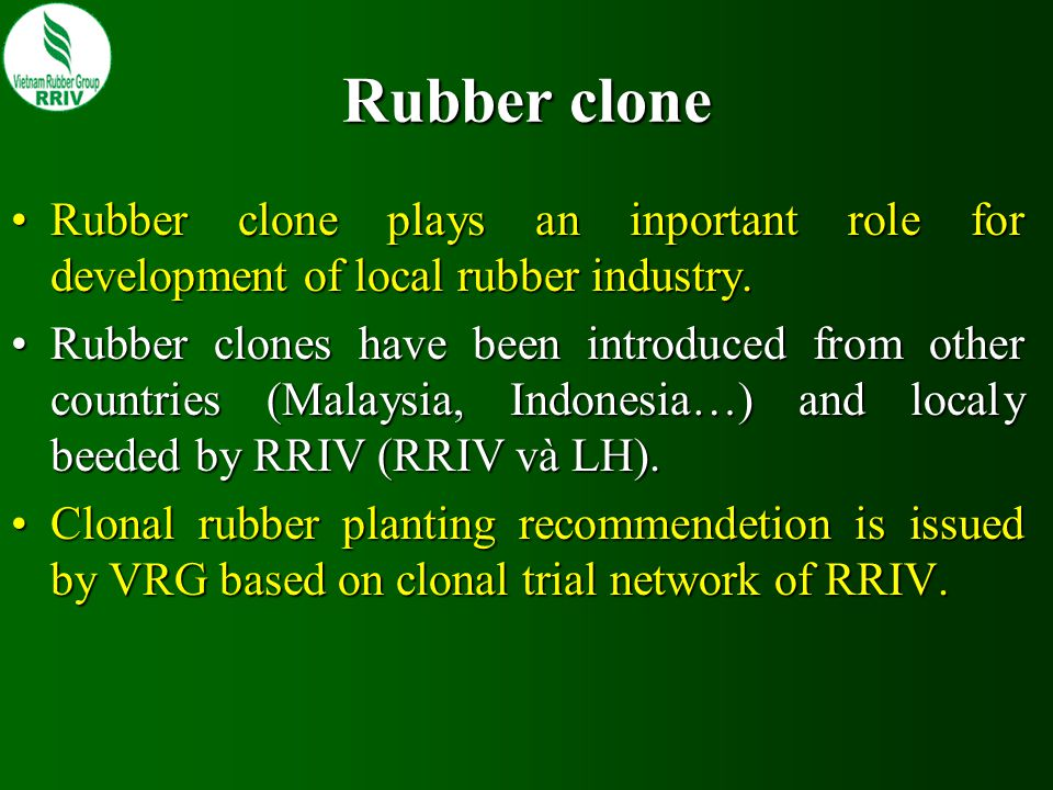 Rubber clone Rubber clone plays an inportant role for development of local rubber industry.