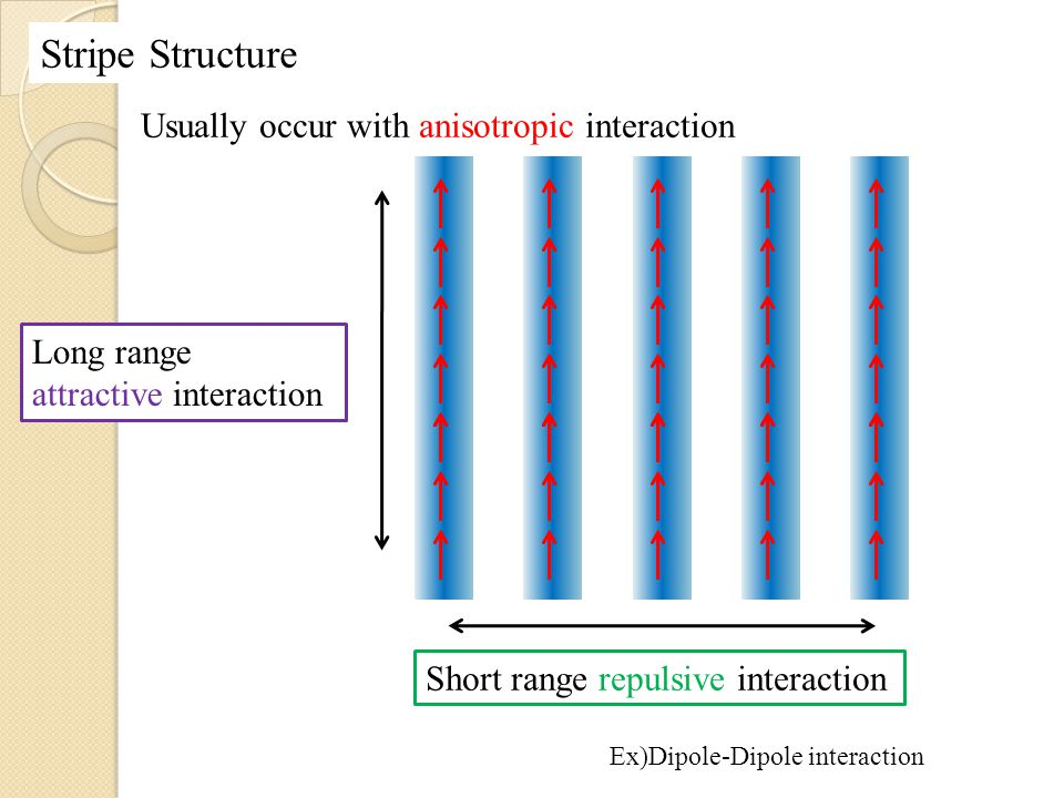 Stripe Structure Usually occur with anisotropic interaction Long range