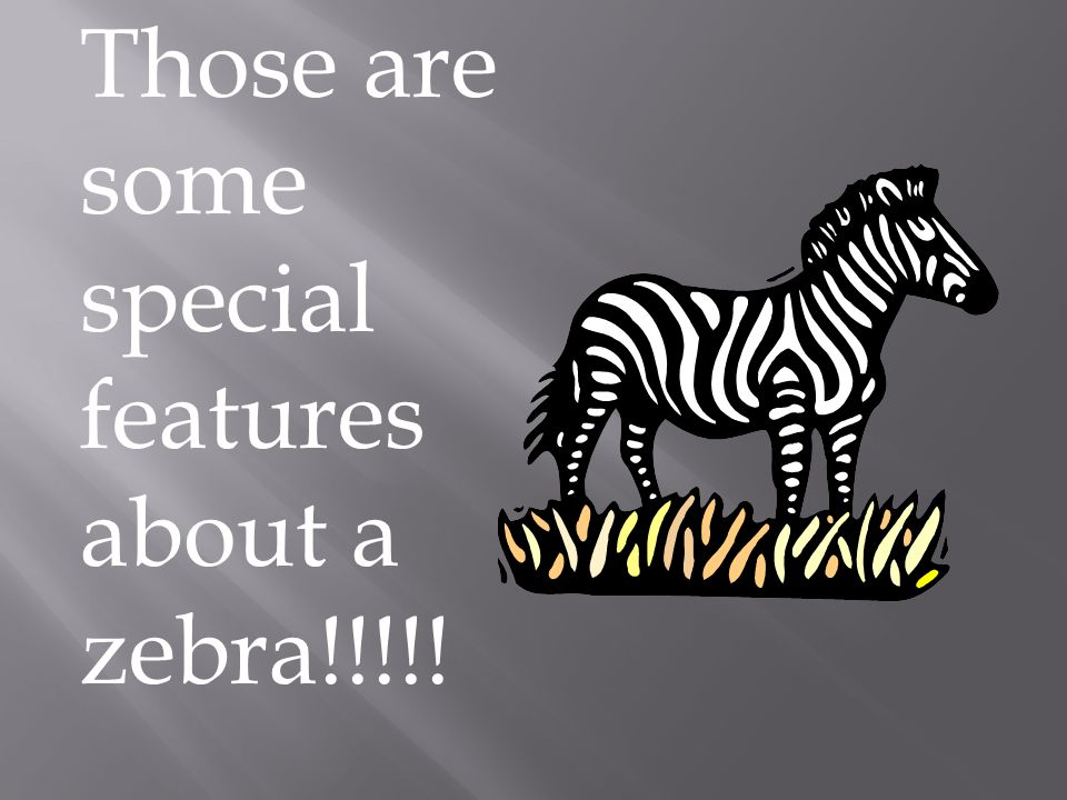 Those are some special features about a zebra!!!!!
