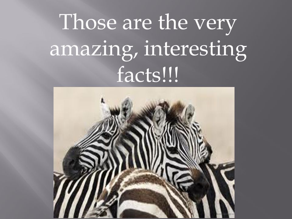 Those are the very amazing, interesting facts!!!