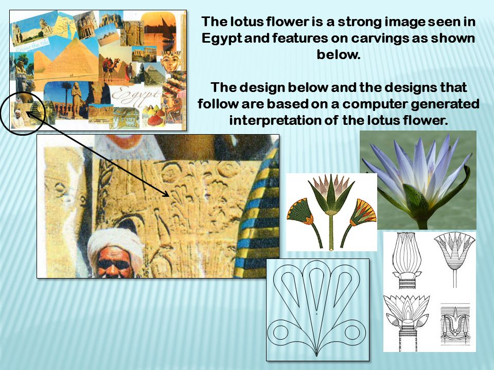 The lotus flower is a strong image seen in Egypt and features on carvings as shown below.