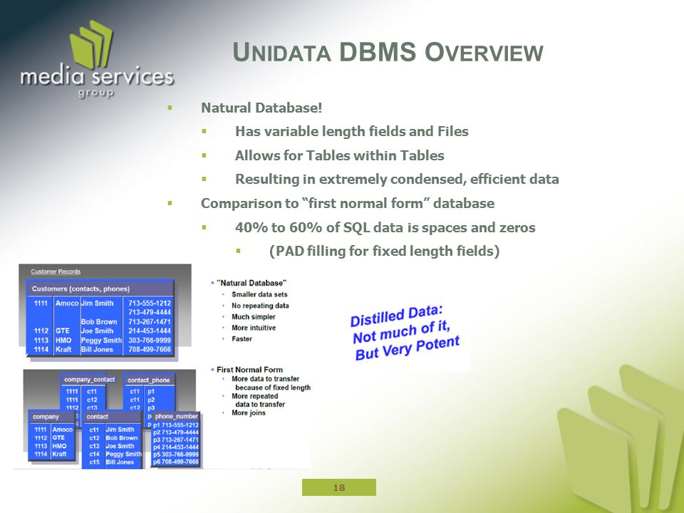 Unidata DBMS Overview Natural Database!