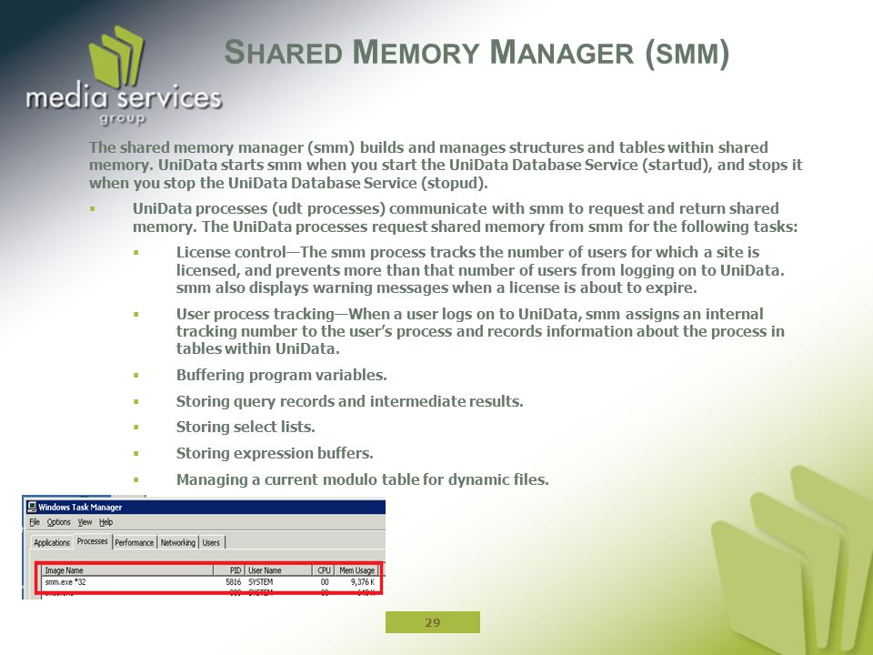 Shared Memory Manager (smm)