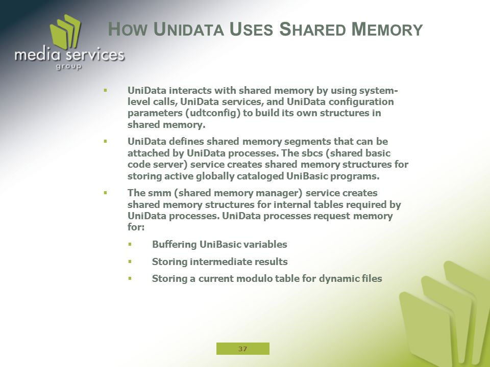 How Unidata Uses Shared Memory