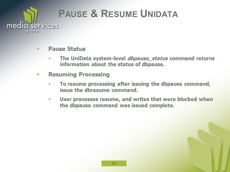 Pause & Resume Unidata Pause Status Resuming Processing