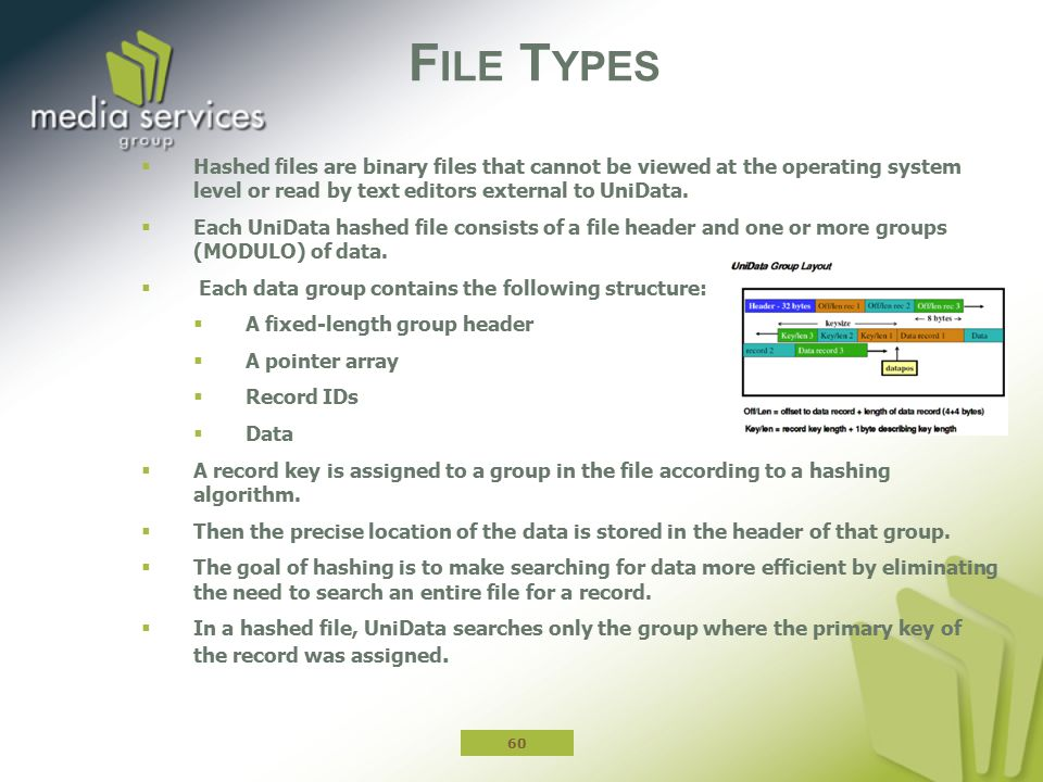 File Types Hashed files are binary files that cannot be viewed at the operating system level or read by text editors external to UniData.
