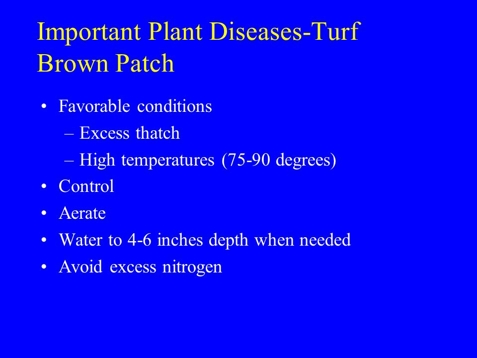 Important Plant Diseases-Turf Brown Patch