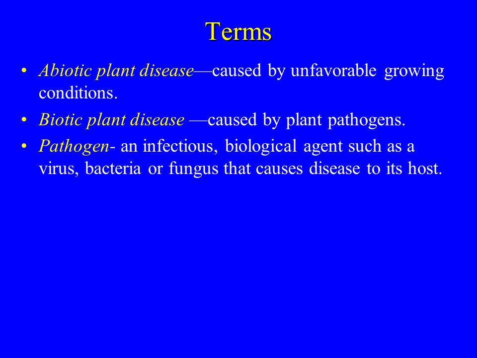 Terms Abiotic plant disease—caused by unfavorable growing conditions.