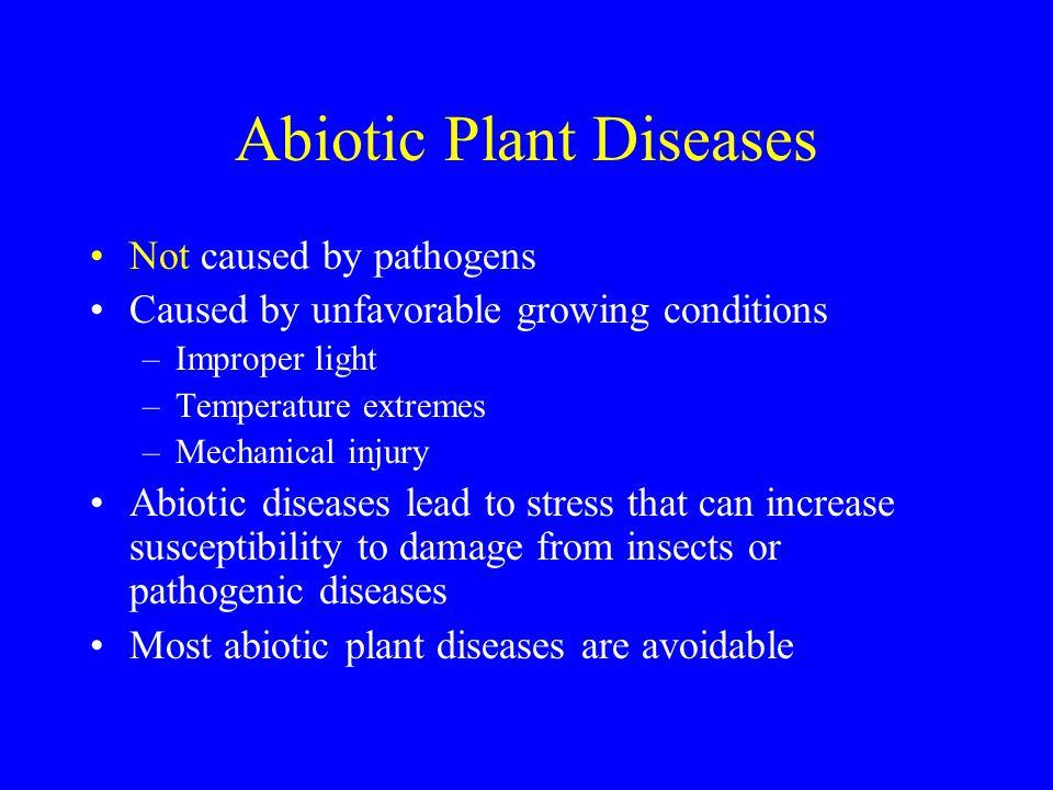 Abiotic Plant Diseases