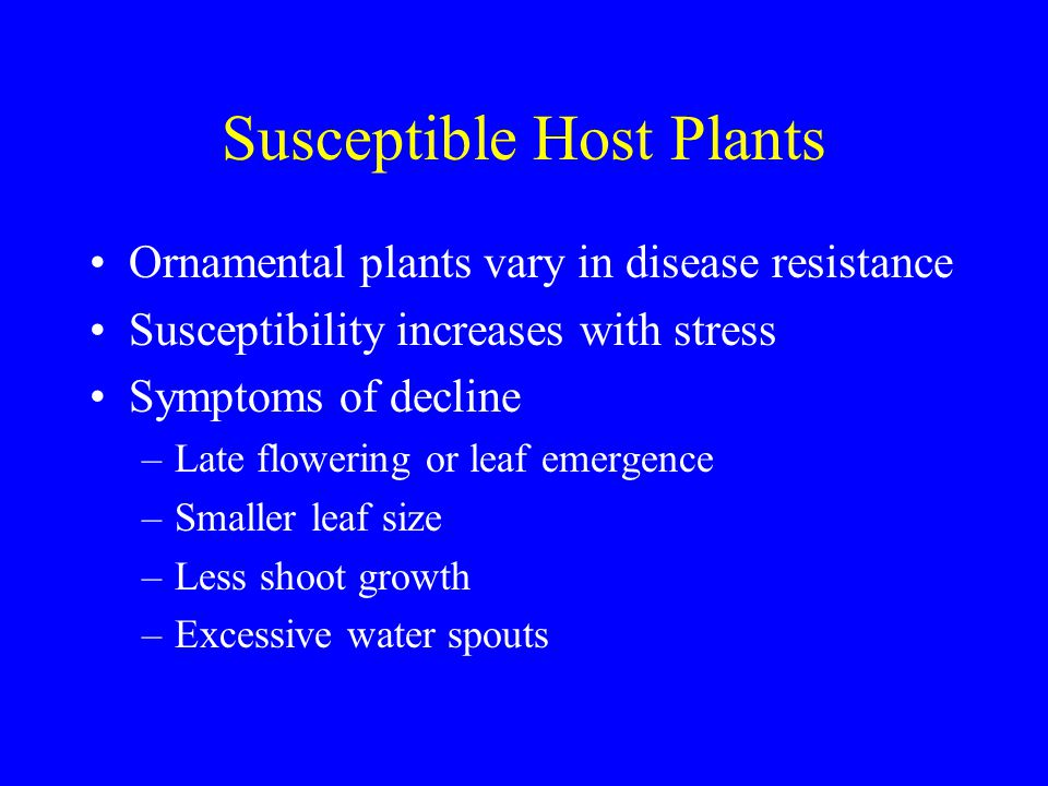 Susceptible Host Plants