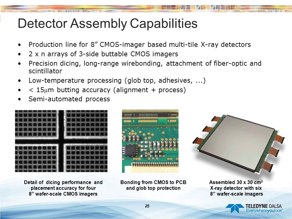 Detector Assembly Capabilities