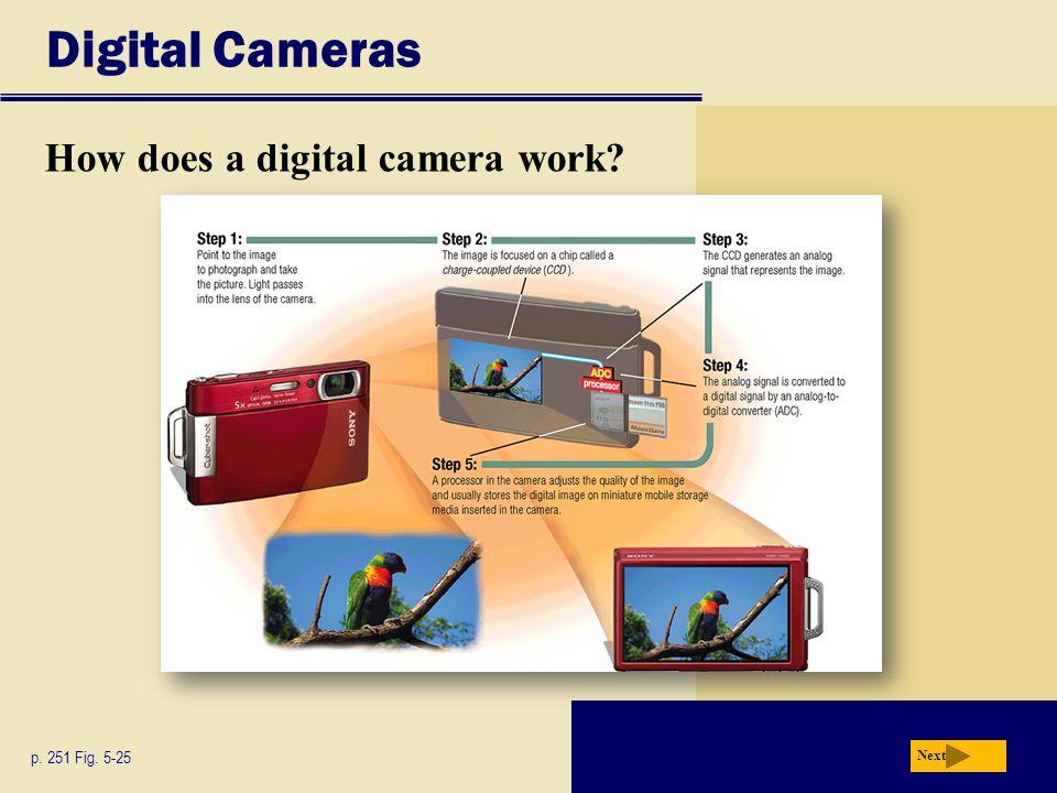 Digital Cameras How does a digital camera work p. 251 Fig. 5-25 Next