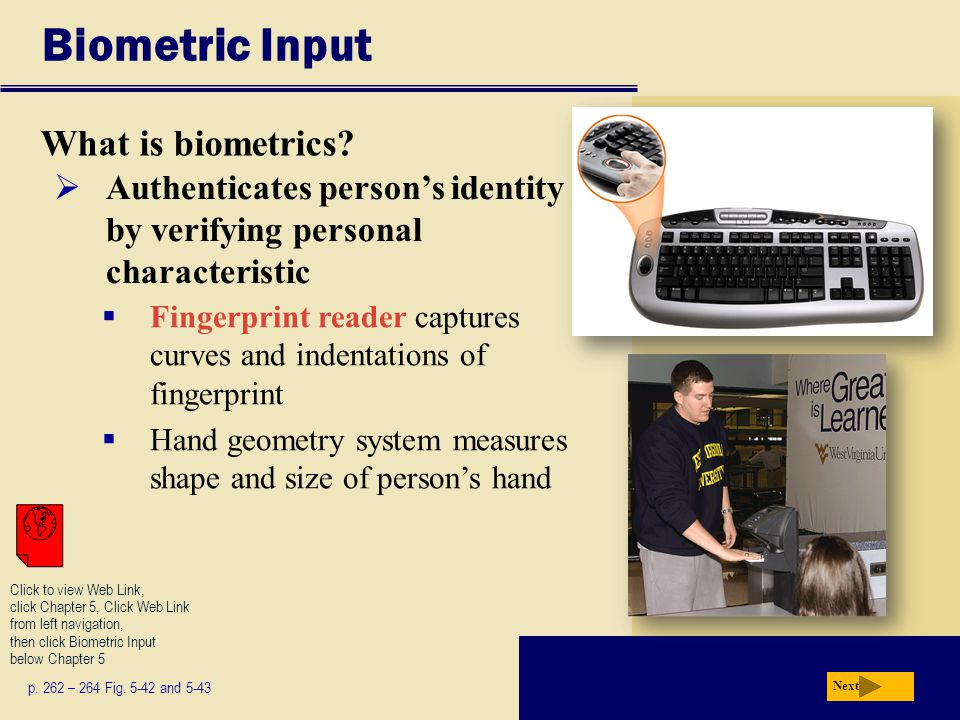 Biometric Input What is biometrics
