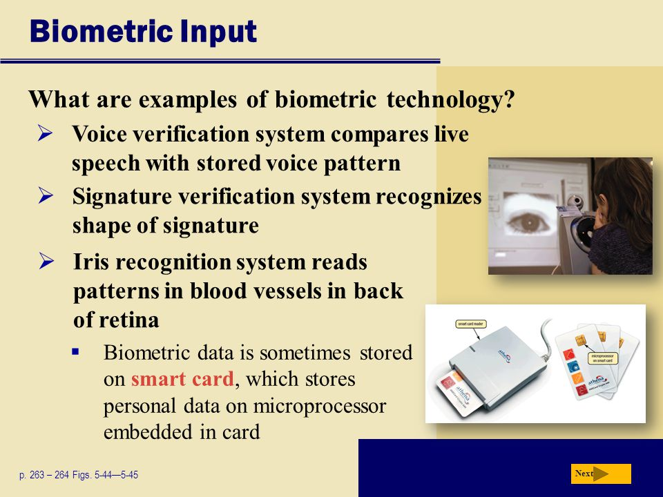Biometric Input What are examples of biometric technology