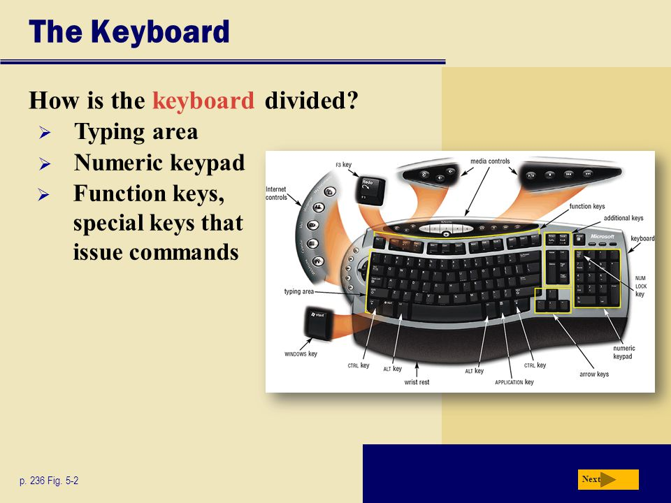 The Keyboard How is the keyboard divided Typing area Numeric keypad