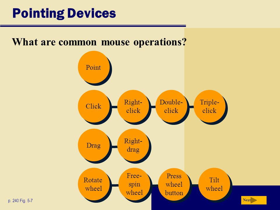 Pointing Devices What are common mouse operations Point Click