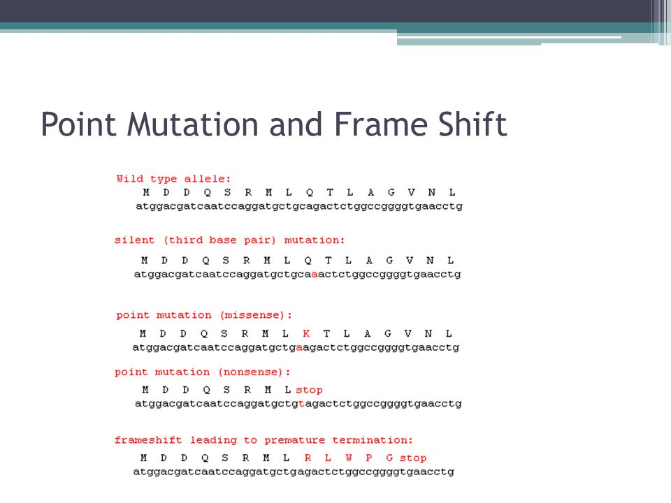 Point Mutation and Frame Shift