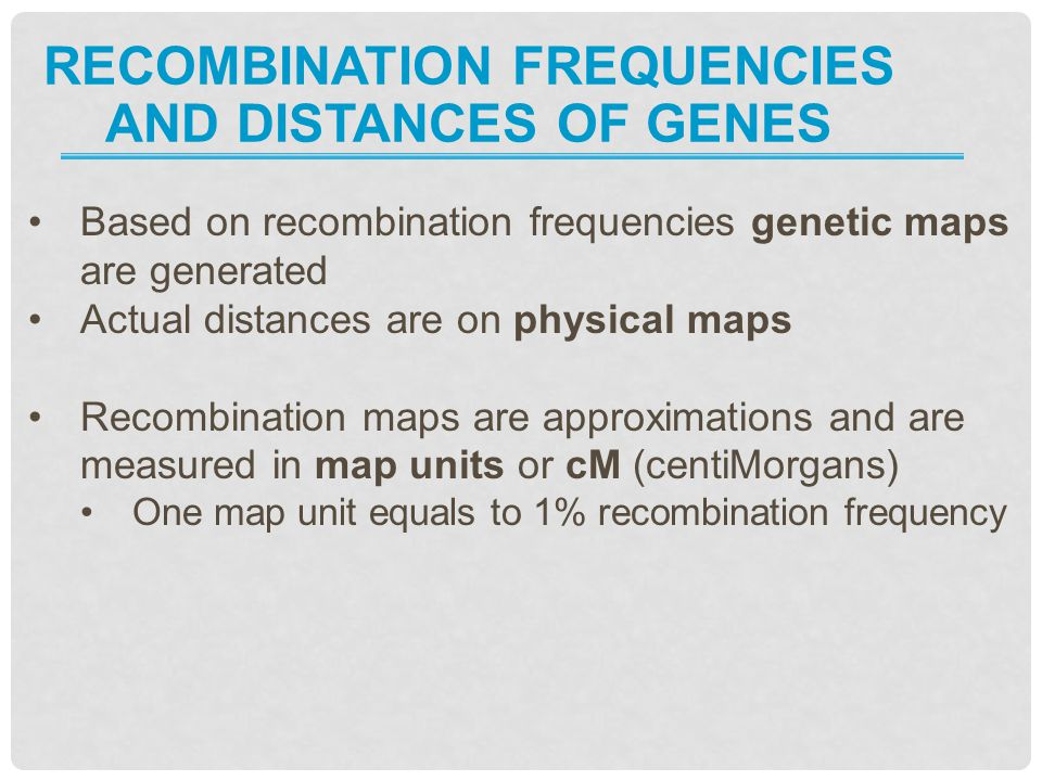 Recombination frequencies and distances of genes