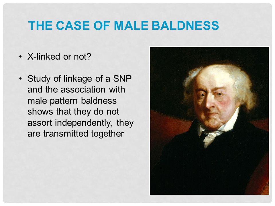 The case of male baldness
