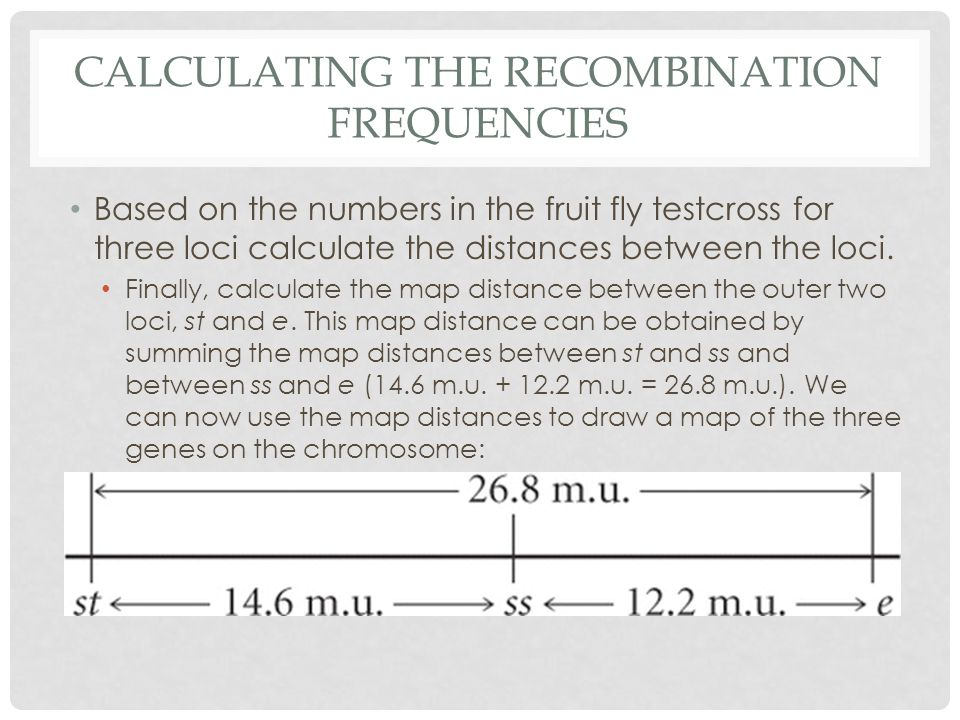 Calculating the recombination frequencies