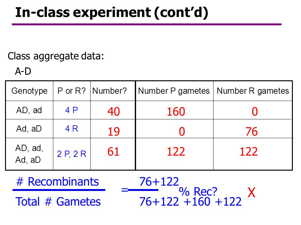 In-class experiment (cont'd)