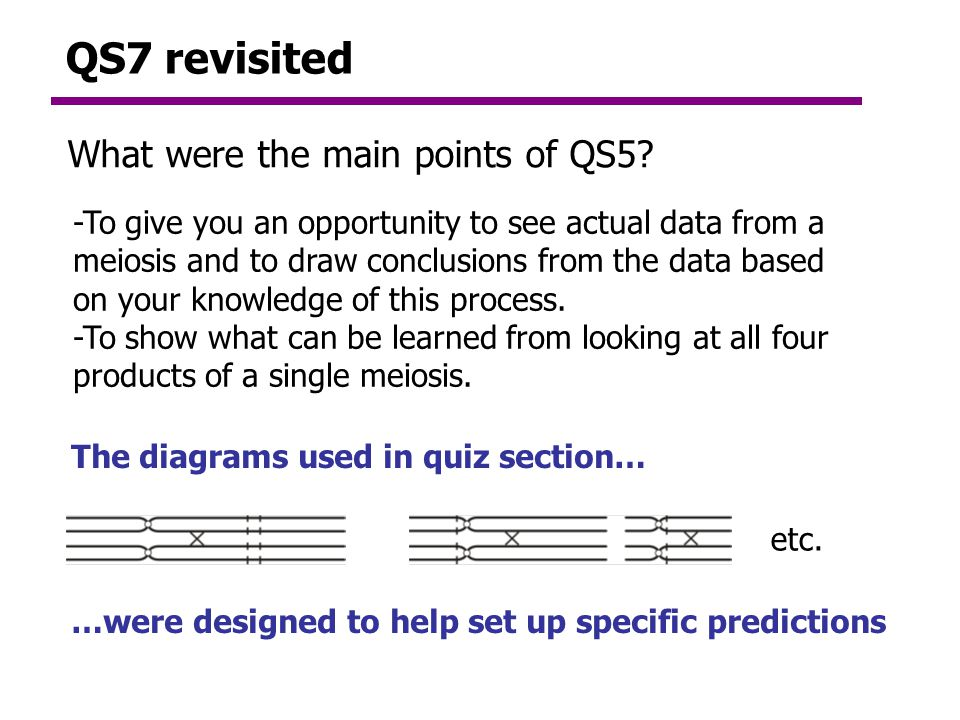QS7 revisited What were the main points of QS5