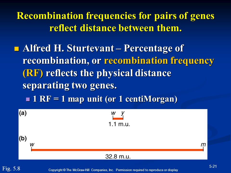 Recombination frequencies for pairs of genes reflect distance between them.