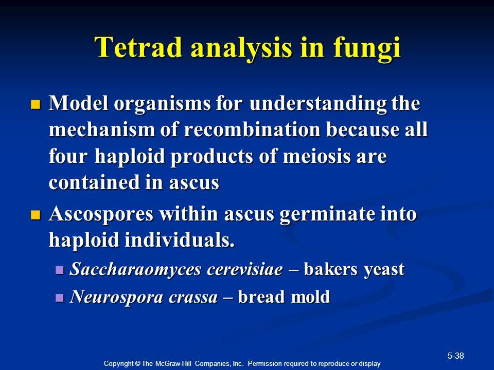 Tetrad analysis in fungi